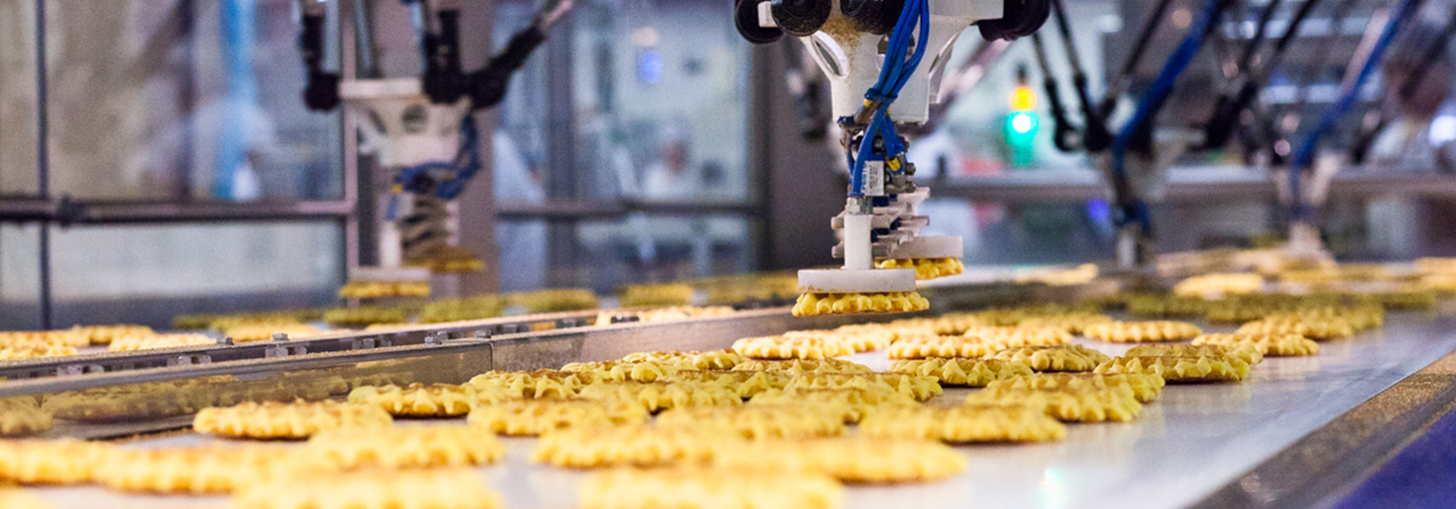 Close up of waffles on conveyor